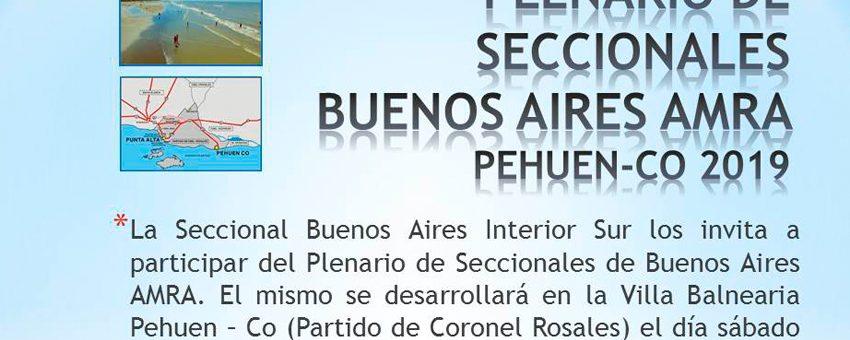 SE VIENE UN GRAN PLENARIO DE SECCIONALES DE LA PROVINCIA DE BUENOS AIRES
